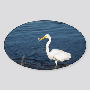 Snowy Egret with Fish Sticker (Oval)