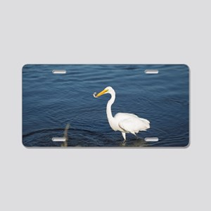 Snowy Egret with Fish Aluminum License Plate