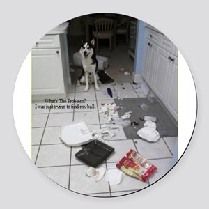 Innocent Siberian Husky Round Car Magnet