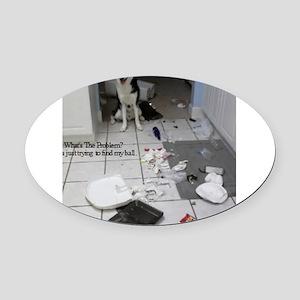 Innocent Siberian Husky Oval Car Magnet