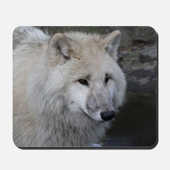 Wolf 0215 Mousepad