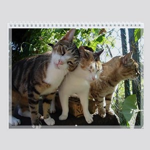 Cat Shelter Felix Wall Calendar