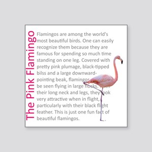 Fun Flamingo Fact Sticker
