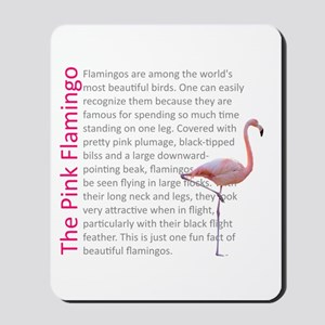 Fun Flamingo Fact Mousepad