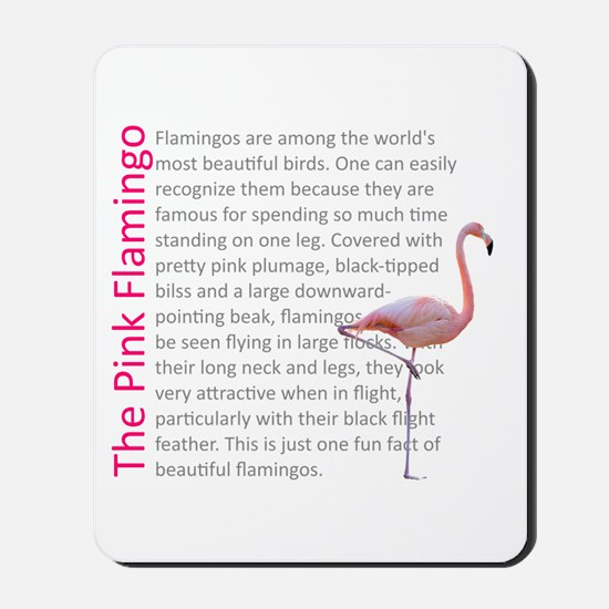 Fun Flamingo Fact Mousepad