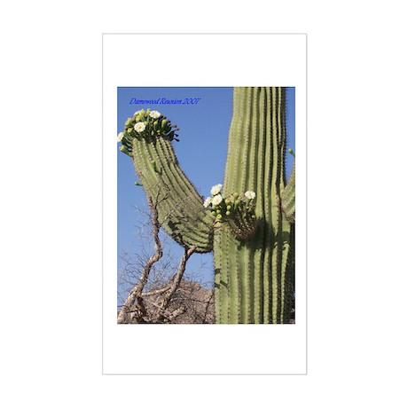 Damewood Cactus Rectangle Sticker