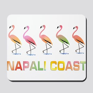 March of the Tropical Flamingos NAPALI C Mousepad
