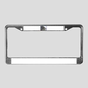 Thor License Plate Frame