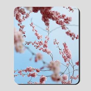 blue cherry blossoms flowers Mousepad