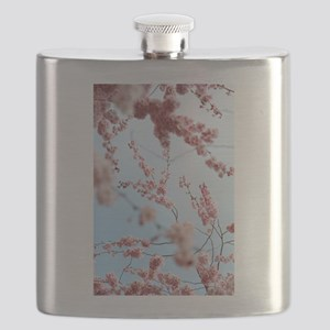 blue cherry blossoms flowers Flask