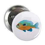Longear Blue Sunfish Button