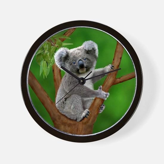 Blue-Eyed Baby Koala Wall Clock