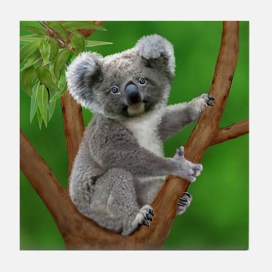 Blue-Eyed Baby Koala Tile Coaster