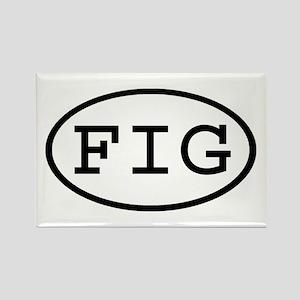 FIG Oval Rectangle Magnet