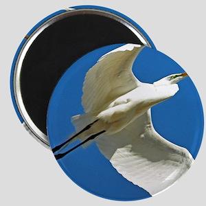 blue white egret bird Magnets