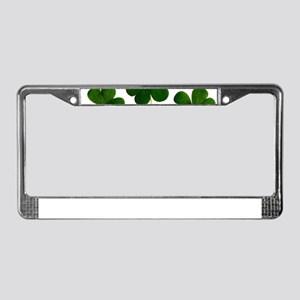 st patricks day shamrocks clov License Plate Frame