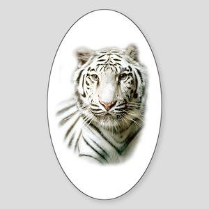 White Tiger Oval Sticker