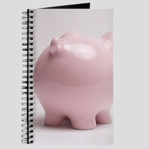 funny piggy bank butt photo Journal