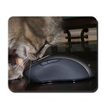 A cat can look at a Mousepad