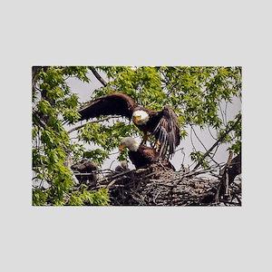 Bald Eagle Family Rectangle Magnet