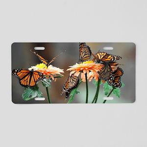 Monarch Butterflies Aluminum License Plate