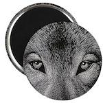 Wolf Sketch Magnet