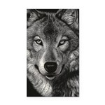 Wolf Sketch Rectangle Car Magnet
