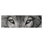 Wolf Sketch Sticker (Bumper 10 pk)