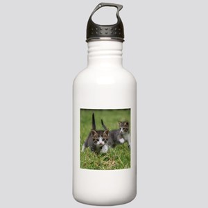 Cat_2015_0102 Stainless Water Bottle 1.0L