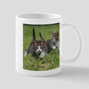 Cat_2015_0102 Mugs