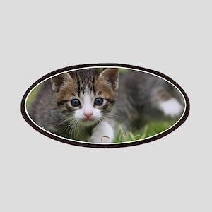 Cat_2015_0102 Patch