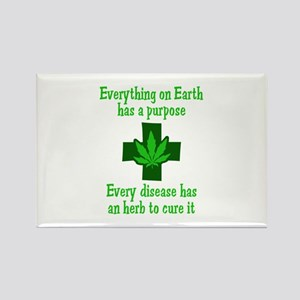 HERB TO CURE IT Magnets