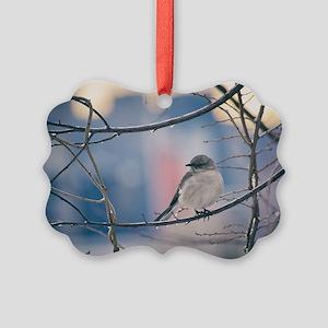 Northern Mockingbird Picture Ornament