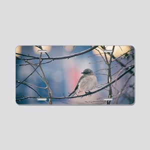 Northern Mockingbird Aluminum License Plate