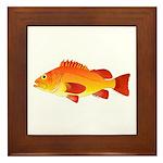 Yelloweye Rockfish Framed Tile