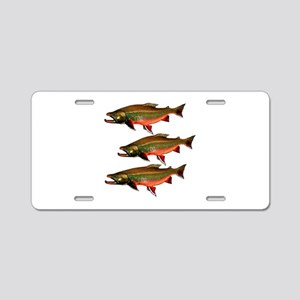 SESSION TIME Aluminum License Plate