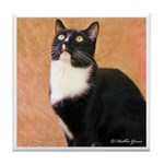 Curious Cat Tile Coaster