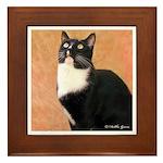 Curious Cat Framed Tile