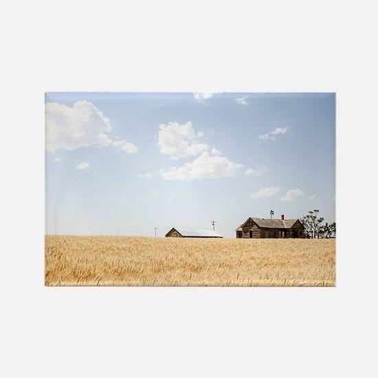 Wheat Field Ripening Magnets