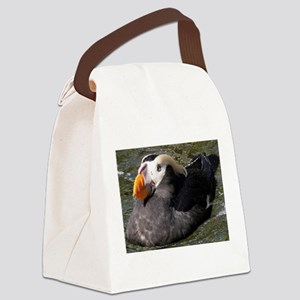 Tufted Puffin Close-Up Canvas Lunch Bag