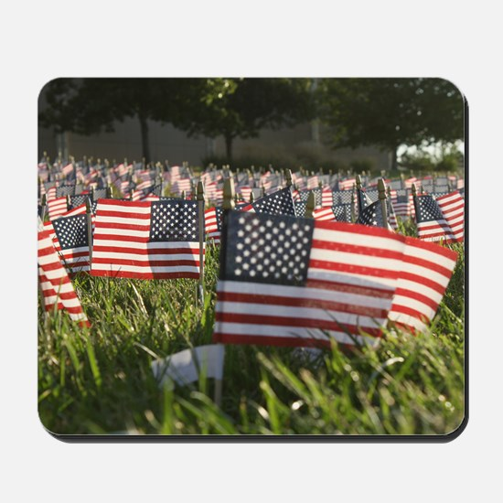 Field of Flags Mousepad