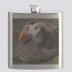 Tufted Puffin Close-Up Flask