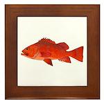 Vermilion Rockfish v2 Framed Tile