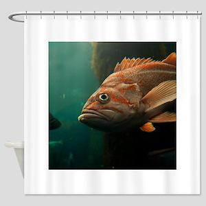 Fish 8965 Shower Curtain