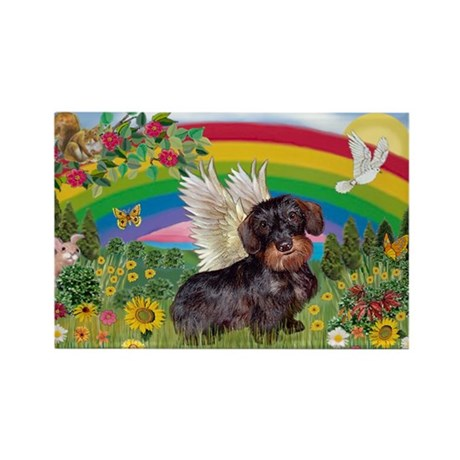 Rainbow & Wire Haired Dachshund Rectangle Magnet