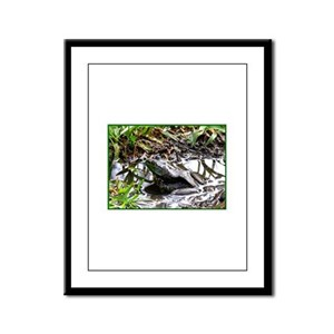 Frog Framed Panel Print