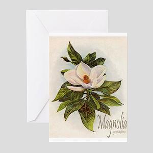 Magnolia Grandiflora Greeting Cards (Pk of 10)
