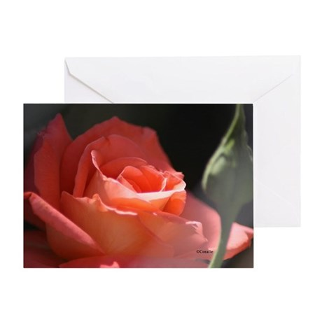 The Rose Flower Bloom Greeting Card