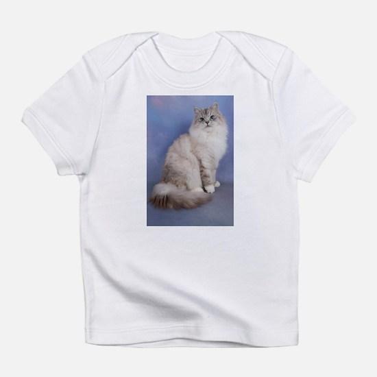 blue tabby colourpoint siberian cat Infant T-Shirt