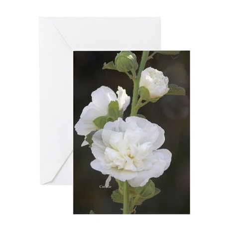 White Hollyhock Flowers Greeting Cards